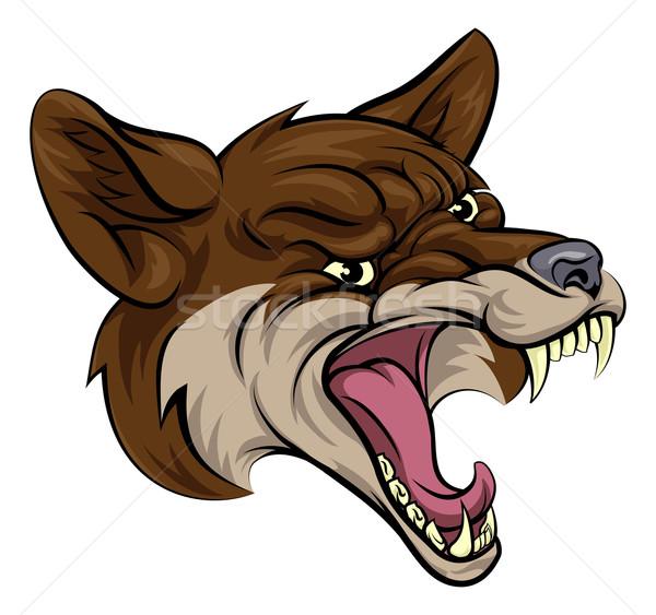 Coyote mascot Stock photo © Krisdog