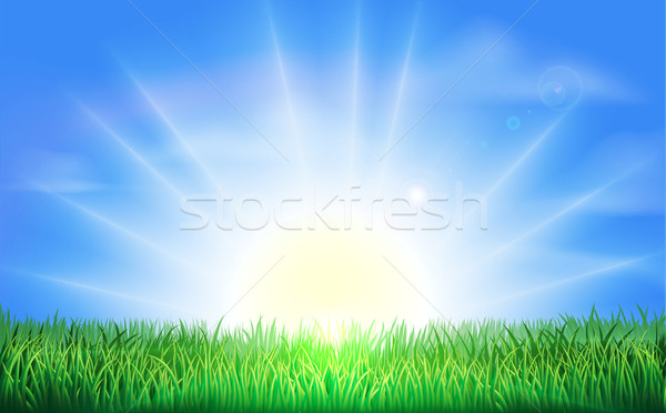 Sunrise over green field of grass Stock photo © Krisdog