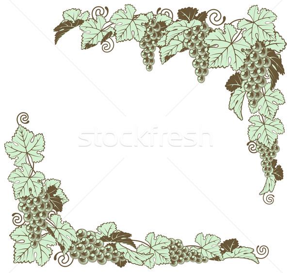 Grape vine border design Stock photo © Krisdog