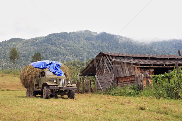 The old lorry loaded by hay Stock photo © krugloff