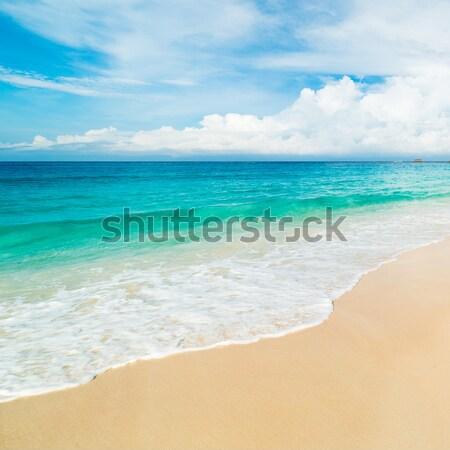 tropical beach Stock photo © kubais