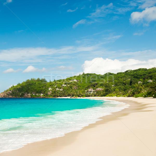 Playa tropical turquesa agua cielo paisaje fondo Foto stock © kubais