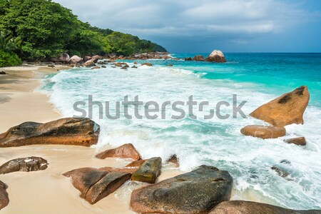 beach on Seychelles Stock photo © kubais