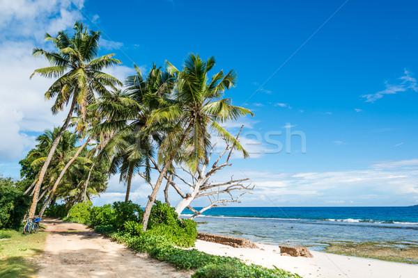 Spiaggia Seychelles la isola cielo acqua Foto d'archivio © kubais