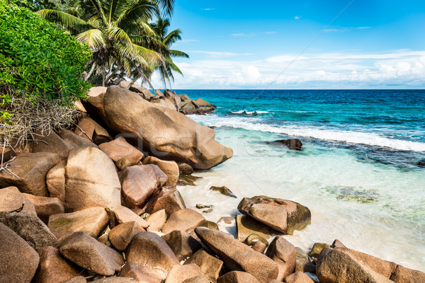 Tengerpart Seychelle-szigetek LA sziget víz tájkép Stock fotó © kubais