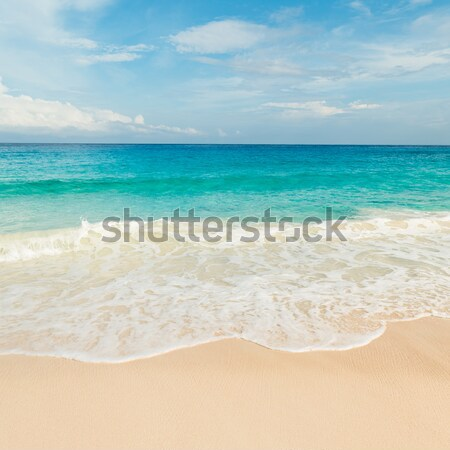 Spiaggia tropicale turchese acqua cielo panorama sfondo Foto d'archivio © kubais
