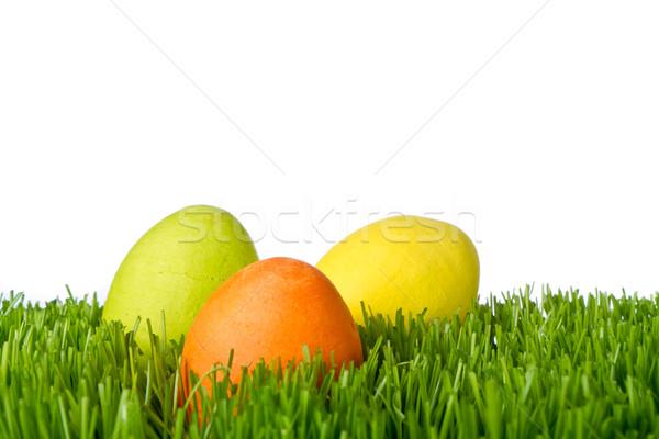 easter eggs in grass Stock photo © kubais