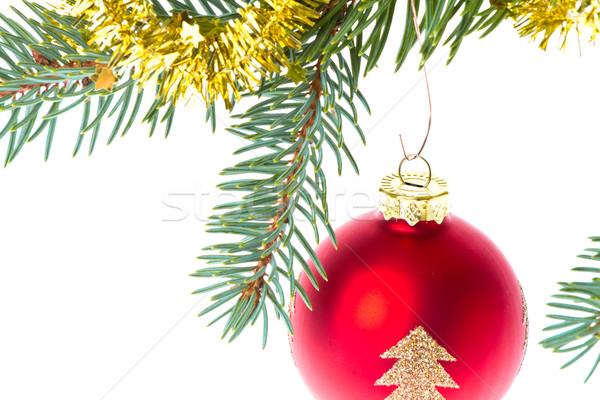 Piros karácsony labda ág izolált fehér Stock fotó © kubais