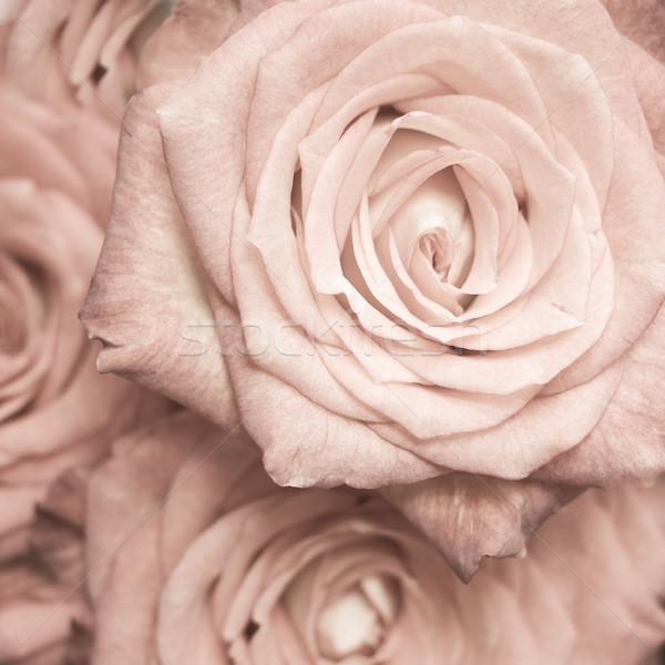 закрывается букет свадьба любви Сток-фото © kubais