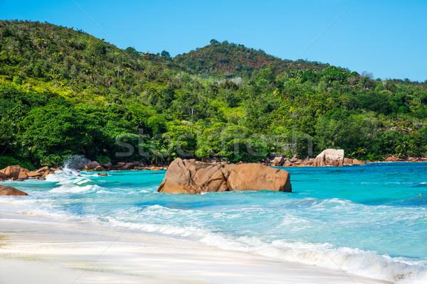 Spiaggia Seychelles isola cielo acqua panorama Foto d'archivio © kubais