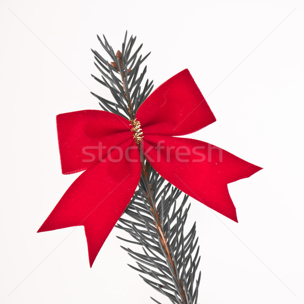 decorated Christmas tree branch Stock photo © kubais