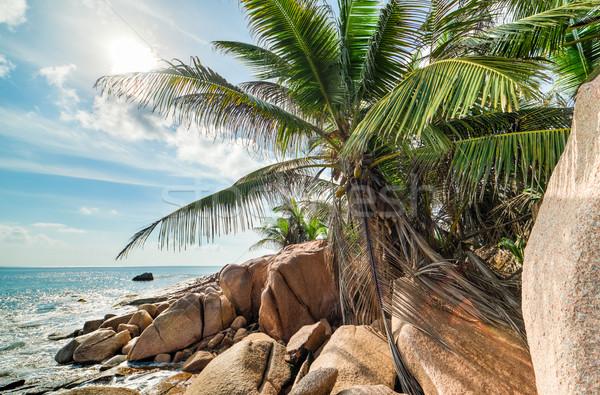 Trópusi türkiz tenger gránit égbolt víz Stock fotó © kubais