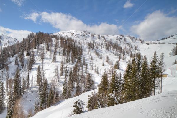 Winter alpine landschap witte landschap hemel Stockfoto © kubais