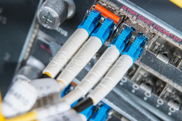 Stock fotó: Rost · hálózat · szerver · optikai · kábelek · adatközpont