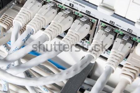 ネットワーク ケーブル 技術 サーバー ケーブル ストックフォト © kubais