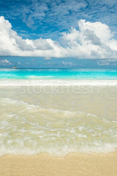 beach background Stock photo © kubais