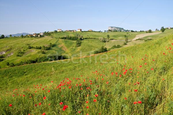 Tipikus toszkán tájkép olasz régió Toszkána Stock fotó © kubais
