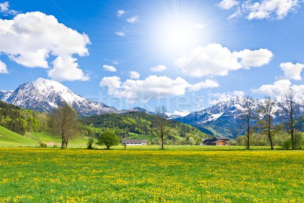 Alpesi tájkép tavasz égbolt fű erdő Stock fotó © kubais