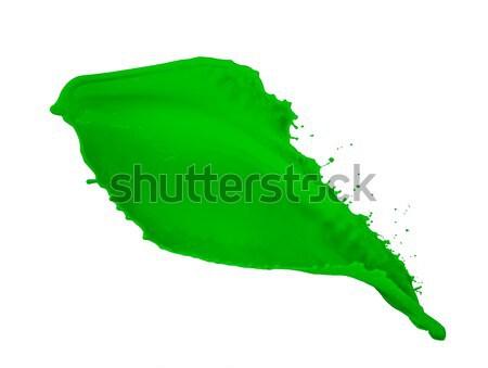 green paint splash  Stock photo © kubais