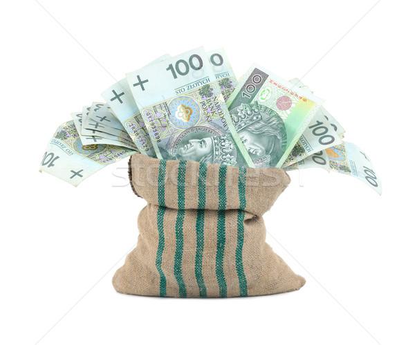 Para çanta yalıtılmış beyaz iş banka Stok fotoğraf © kuligssen
