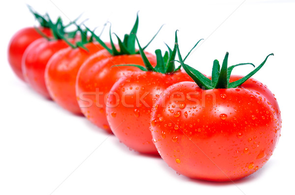 fresh tomatoes in a row Stock photo © kuligssen
