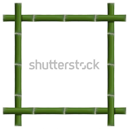 Vazio quadro bambu verde isolado branco Foto stock © kup1984