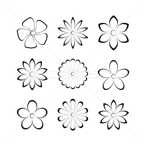 花 芽 集 向量 設計 分子 商業照片 © kup1984