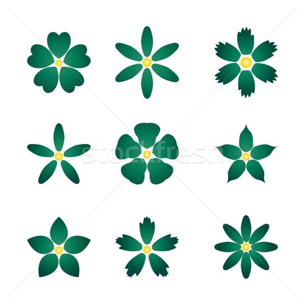 çiçek tomurcuk ayarlamak renk vektör dizayn Stok fotoğraf © kup1984