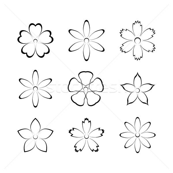 çiçek tomurcuk ayarlamak vektör dizayn elemanları Stok fotoğraf © kup1984