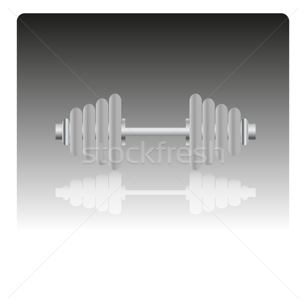 ダンベル アイコン スタイリッシュ ミラー 画像 コンピュータ ストックフォト © kup1984