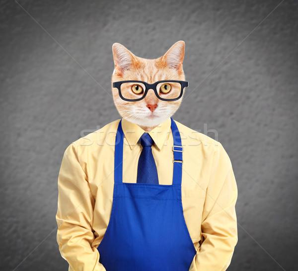 имбирь кошки работник серый стены бизнеса Сток-фото © Kurhan