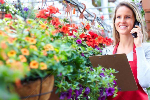 Foto stock: Jardinería · florista · de · trabajo · invernadero · mujer
