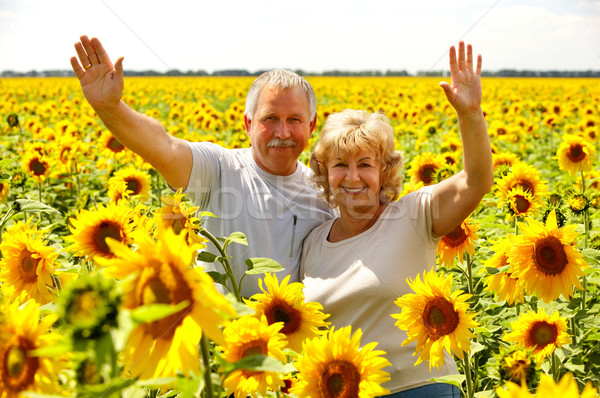 Сток-фото: пожилого · пару · улыбаясь · счастливым · любви · Открытый