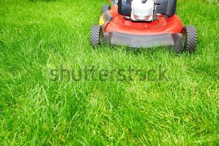 Lawn mower cutting green grass. Stock photo © Kurhan