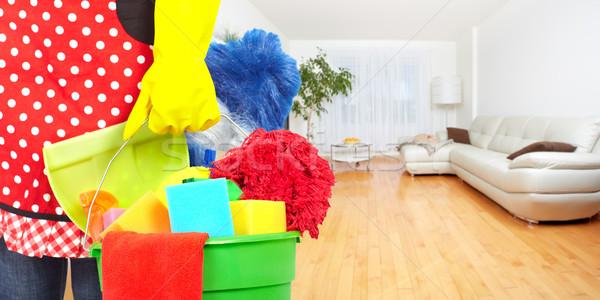 Hizmetçi eller temizlik araçları ev hizmet Stok fotoğraf © Kurhan