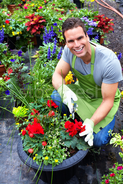 Florist man working with flowers. Stock photo © Kurhan