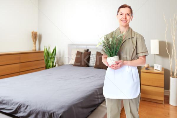 Soubrette femme usine maison nettoyage Ouvrir la Photo stock © Kurhan