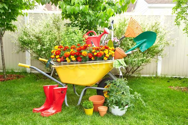 Ogród narzędzia taczki łopata grabie piękna Zdjęcia stock © Kurhan