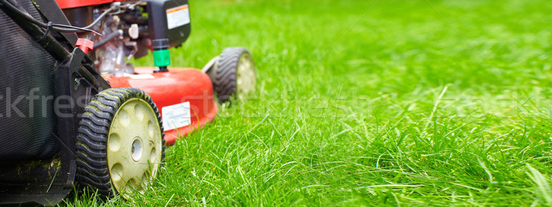 Lawn mower Stock photo © Kurhan