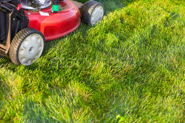 Lawn mower cutting green grass. Stock photo © Kurhan