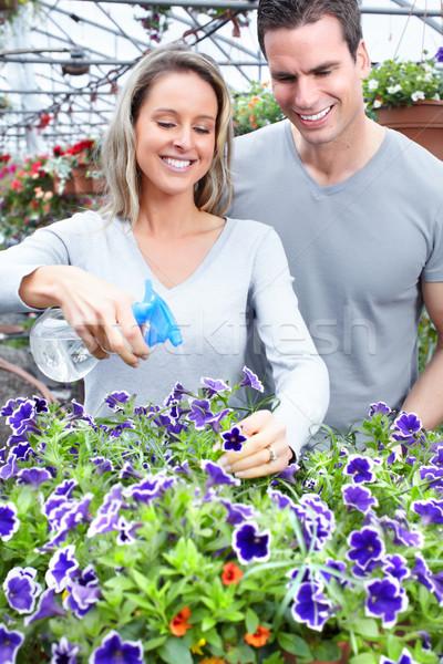 Ogrodnictwo młodych uśmiechnięty ludzi pracy szklarnia Zdjęcia stock © Kurhan