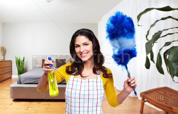 Szobalány nő takarítás szerszámok ház szolgáltatás Stock fotó © Kurhan