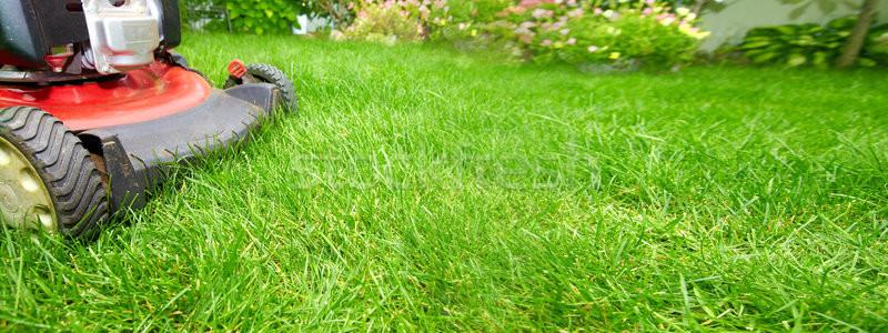 Fűnyíró vág zöld fű udvar tavasz fű Stock fotó © Kurhan