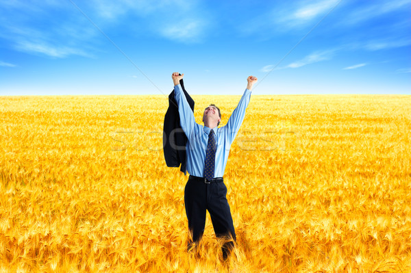 Business success Stock photo © Kurhan