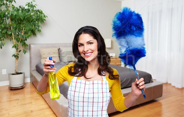 Soubrette femme nettoyage outils maison Ouvrir la Photo stock © Kurhan