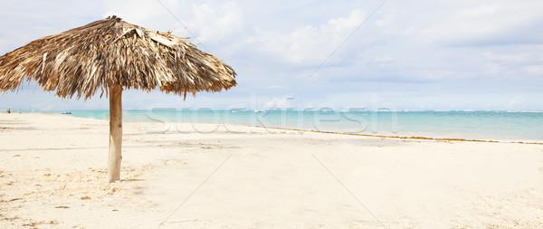 Ombrellone esotiche Caraibi spiaggia cielo Foto d'archivio © Kurhan
