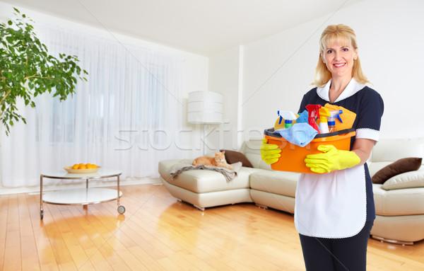 горничная женщину очистки инструменты дома службе Сток-фото © Kurhan