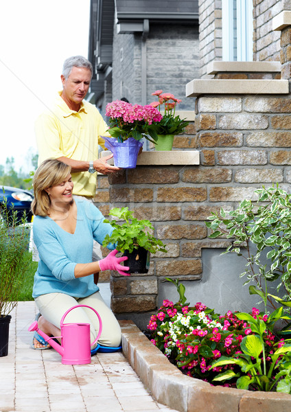Stock photo: Gardening senior couple.