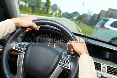 Car driver. Stock photo © Kurhan