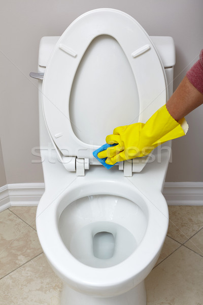 Toilet bowl cleaning. Stock photo © Kurhan